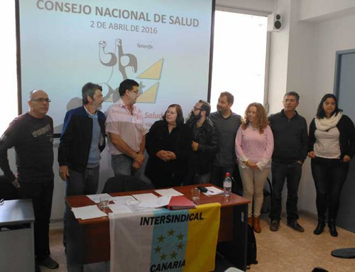 La Federación de Salud celebró su Consejo Nacional